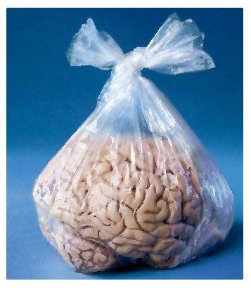 brain-bag